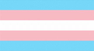 Flag for International Transgender Day of Visibility.png